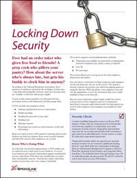 Locking Down Security PDF